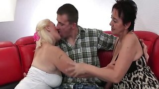 Slutty cougars bowing dick in 3some